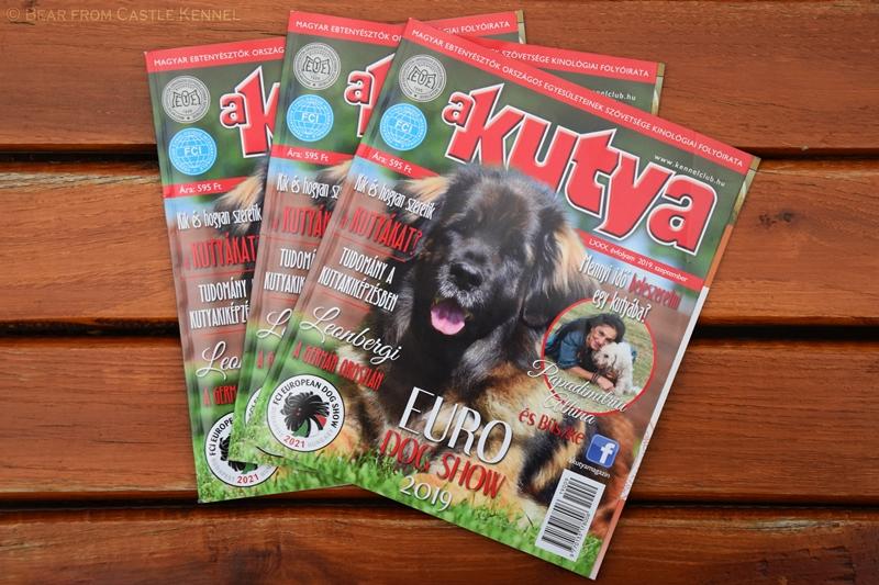 """""""A Kutya"""" Magazin"""